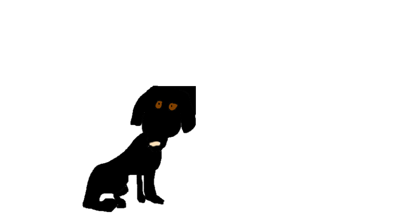 black-lab